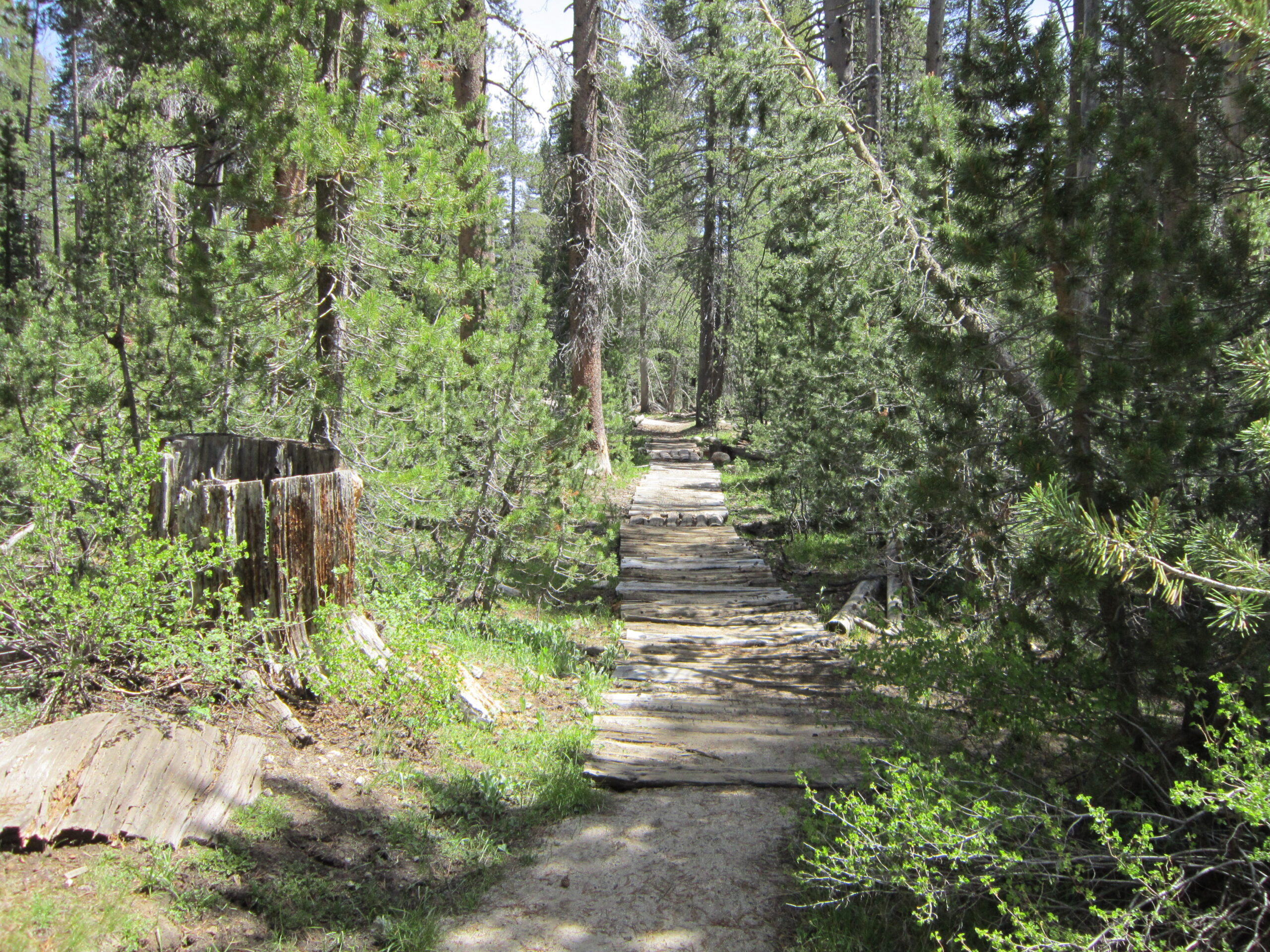 Courtright Reservoir Guided Hiking